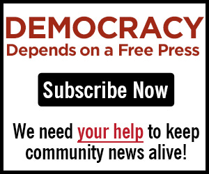 View_Subscribe_300x250_Democracy_2021-01-04.jpg